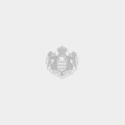 Discours prononcé par S.A.R. la Princesse de Hanovre à l'occasion de la Réunion des Ambassadeurs...