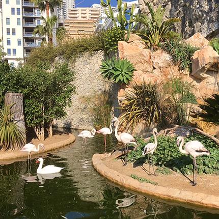 Le Jardin Animalier de Monaco