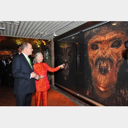 Inauguration de l'exposition de Jane Goodall par S.A.S. le Prince Albert II